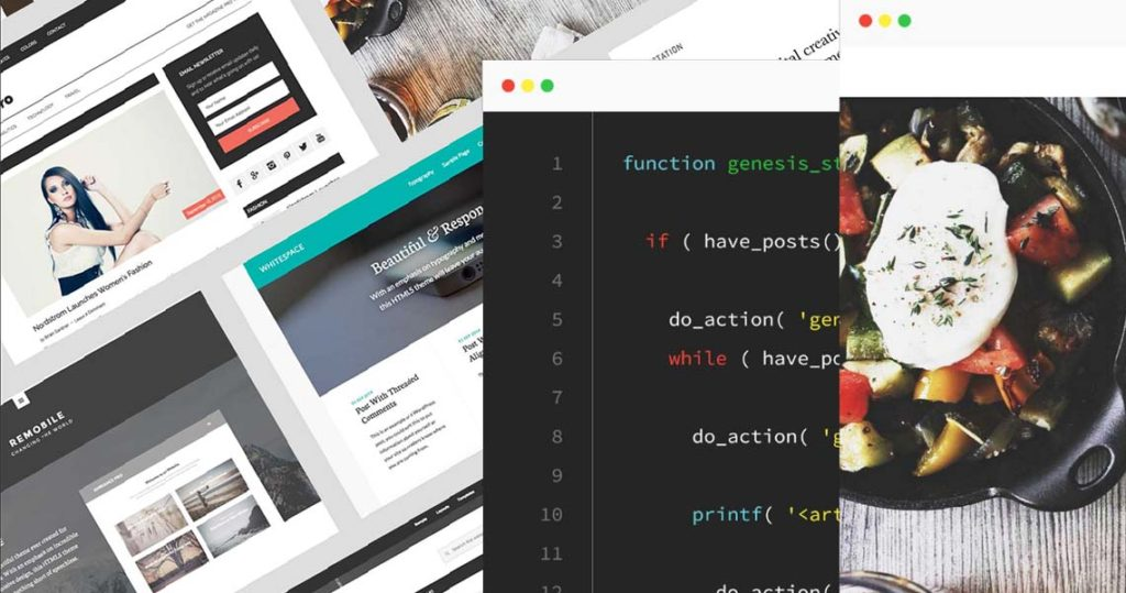 Top 3 Premium WordPress Theme Providers